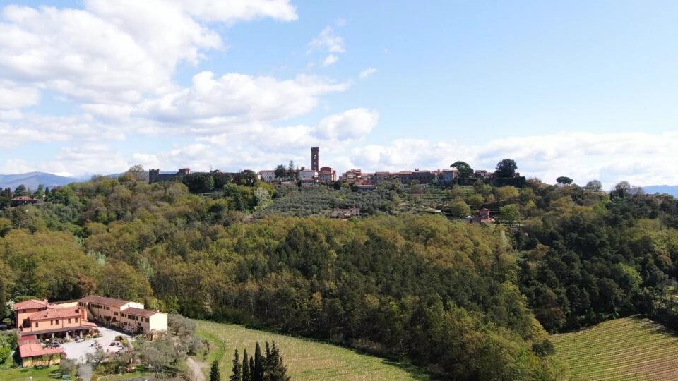Montecarlo. Panorama sul borgo, ripreso dalla parte lucchese.